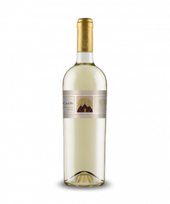 Castillo Chardonnay 2019 IGP Salento - Cardone