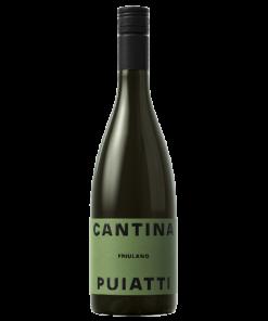 Friulano Friuli Doc 2020 - Puiatti