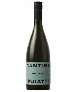 Pinot Grigio Friuli Doc 2020 - Puiatti