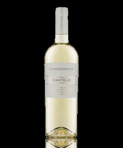 Chardonnay IGT Salento 2019 - Cantele