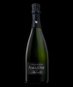 Champagne Amazone de Palmer