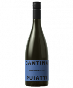 Sauvignon Blanc Friuli Doc 2020 - Puiatti